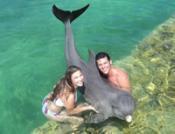 Swimming with Dolphins: Swimming with dolphins Cayo Santa Maria