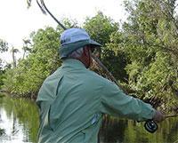 Fishing: Rio Hatiguanico