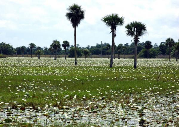 Areas of Natural Interest: Montemar National Park