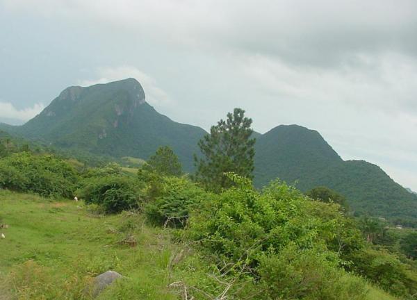 Areas of Natural Interest: Pan Guajaibon Mountain