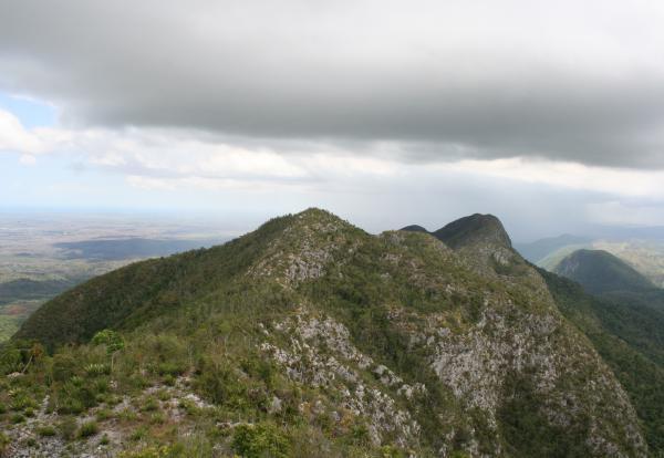 Areas of Natural Interest: Sierra del Rosario Park