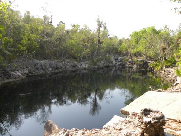 Areas of Natural Interest: Cenote de los Peces